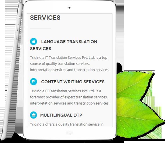 tridindia-services